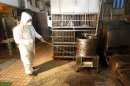 A janitor sprays disinfectant at empty chicken cages in a traditional market in New Taipei city