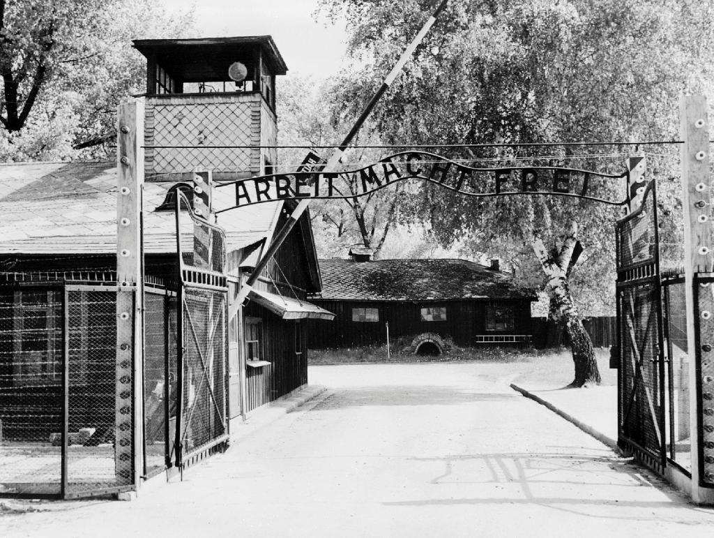 Ex-Auschwitz medic, 95, fit to stand trial: German court