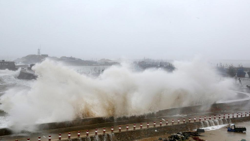 Four dead as southern China battered by Typhoon Mujigae: report