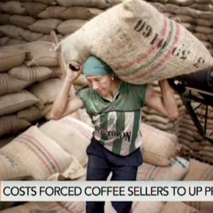 Rain in Brazil Is Causing Coffee Bulls to Run for Cover