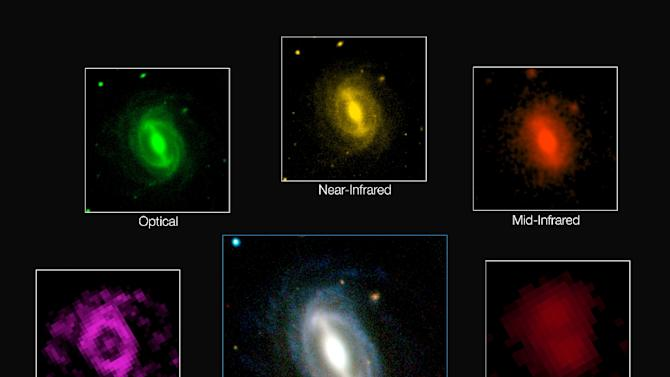 This photo released by the European Southern Observatory on August 6, 2015 shows a composite picture of how a typical galaxy appears at different wavelengths in the GAMA survey