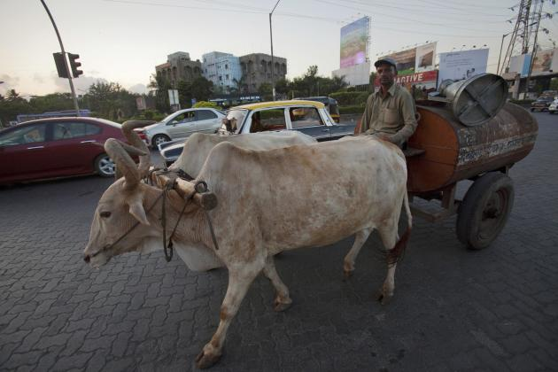 File photo of a man sitting on his bullock-pulled oil delivery wagon as traffic passes on a highway in Mumbai
