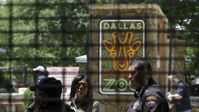 Law enforcement officials and a Dallas Zoo employee are seen behind a closed gate at the Dallas Zoo while the location was temporarily closed allowing authorities inside the to search for two suspects, Friday, April 29, 2011, in Dallas. Officials evacuated part of the zoo after two men fled police and led authorities on a chase through the zoo. (AP Photo/Tony Gutierrez)