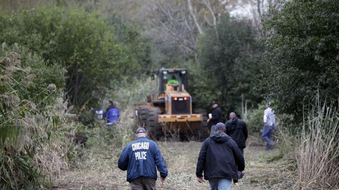 Chicago Police officers enter an area where authorities are busy chopping down 6-to-8-foot tall marijuana plants that they found growing on a chunk of land the size of two football fields on the city's South Side Wednesday, Oct. 3, 2012.  Officers on routine patrol in a police helicopter spotted the crop Tuesday under a canopy of trees about 3 miles from their hangar. (AP Photo/Teresa Crawford)