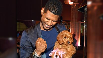 Usher Bids $12,000 for New Puppy