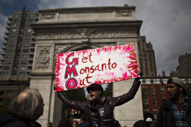 A woman holds up a poster during a protest against U.S.-based Monsanto Co. and genetically modified organisms (GMO), in New York