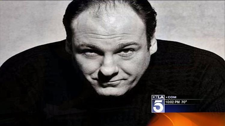 `Tony Soprano` Actor James Gandolfini Dies