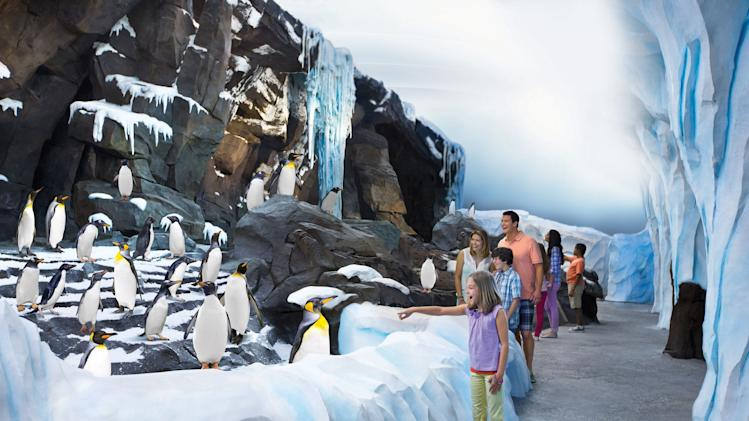 This image released by Seaworld Orlando shows guests visiting the new attraction, Antarctica: Empire of the Penguin, at SeaWorld Orlando in Orlando, Fla., on Friday, May 24, 2013. With a ride, restaurants and the penguin habitat, it's the largest expansion in the park's history. The ride takes visitors through a queue, themed around a fictional penguin named Puck. As visitors make their way through the queue and ride, the temperature keeps dropping as the journey continues _ until visitors are in 30-degree temperatures. (AP Photo/Seaworld Parks & Entertainment via PRNewswire)