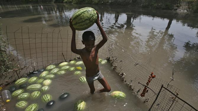 A boy carries a watermelon that was kept in the waters of a canal to keep the melons cool on a hot summer day in Jammu