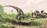 Nyasasaurus: Is It World's Oldest Dinosaur?