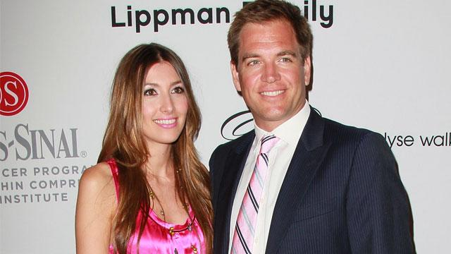 Michael Weatherly's Baby Arrives