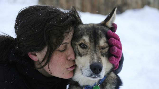 FILE - In this March 8, 2012, file photo, Karin Hendrickson embraces her team leader, Hatchet in Takotna, Alaska, during the Iditarod Trail Sled Dog Race. The world's most famous sled dog race kicks off Saturday, March 2, 2013, with an 11-mile-long trot through Anchorage. The real competition begins Sunday in Willow. (AP Photo/Anchorage Daily News, Marc Lester, file)