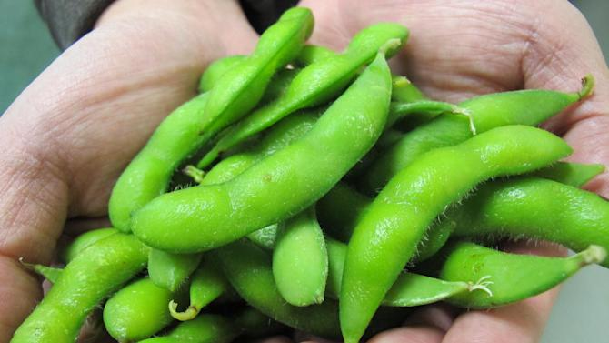 Ray Chung holds some edamame at a processing plant in Mulberry, Ark., on Wednesday, March 13, 2013. (AP Photo/Jeannie Nuss)