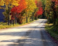 A fall road that clearly demonstrates the changing colors of fall and the feeling the season brings about.
