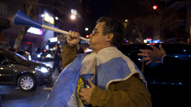 A demonstrator blows a plastic horn during a protest against Argentina's President Cristina Fernandez government in Buenos Aires, Argentina, Thursday, May 31, 2012. (AP Photo/Natacha Pisarenko)