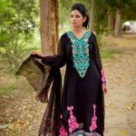 damak-party-wear-autumn-collection-for-girls