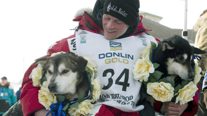 """FILE - In this March 13, 2012, file photo, Dallas Seavey embraces his leaders, Diesel, left, and Guiness after he arrived at the finish line to claim victory in the Iditarod Trail Sled Dog Race in Nome, Alaska. The 2013 Iditarod begins March 3. Seavey, 25, the youngest Iditarod winner ever states: """"My job as a musher is to train a team and train myself to work with whatever conditions Mother Nature throws at us, and the worse it is, the better we do."""" (AP Photo/Anchorage Daily News, Marc Lester, File)"""