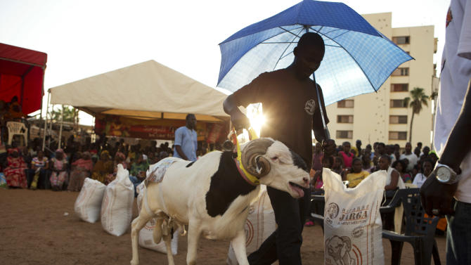 "In this Wednesday, Oct. 3, 2012 photo, Abdou Aziz Mare uses an umbrella to protect his sheep Dogo from the sun, as he walks him around the ring during the final judging portion of the Khar Bii regional final in the SICAP neighborhood of Dakar, Senegal. Mare, who spends up to four hours a day with his sheep, explained that this was Dogo's first exposure to Dakar's blazing sun and his first descent down from the sheltered rooftop terrace where he was born and raised. In a nation where sheep are given names and kept inside homes as companion animals, the most popular show on television is ""Khar Bii,"" or literally, ""This Sheep"" in the local Wolof language. It's an American Idol-style nationwide search for Senegal's most perfect specimen ahead of the Eid al-Adha festival, known locally as Tabaski. (AP Photo/Rebecca Blackwell)"