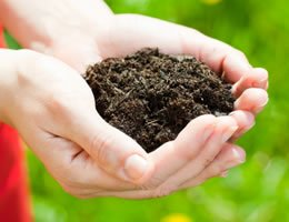 8-ways-to-save-money-on-costly-lawn-care-4-compost-lg