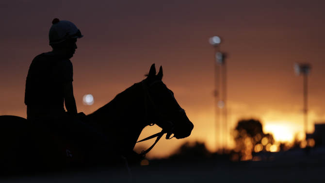 A horse waits to take his morning workout at Churchill Downs Friday, May 3, 2013, in Louisville, Ky. Saturday will be the 139th running of the Kentucky Derby. (AP Photo/Charlie Riedel)