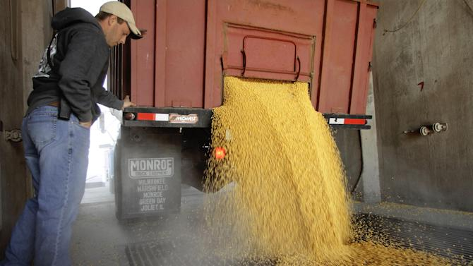 In this Oct. 2012 photo, Colby Elkins helps a central Illinois farmer unload his harvested corn at a grain elevator in Elkhart, Ill. Despite the U.S. enduring its worst drought in decades, a The U.S. Department of Agriculture report to be issued on Friday, Jan. 11, 2013 is expected to show a harvest that's smaller nationally but still surprisingly strong considering the lingering drought. (AP Photo/Seth Perlman)
