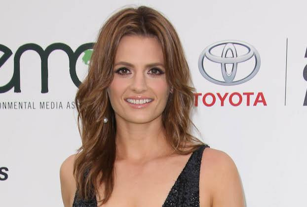 Castle's Stana Katic Eyes Return to TV, as FBI Agent Entangled in a Murderous Mystery — Get Details