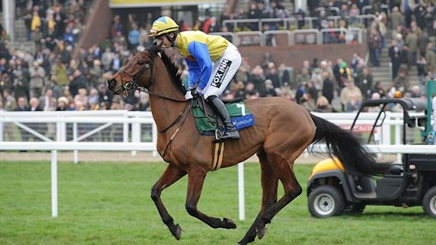 Matuhi running at the 2012 Cheltenham Festival (PA Photos)