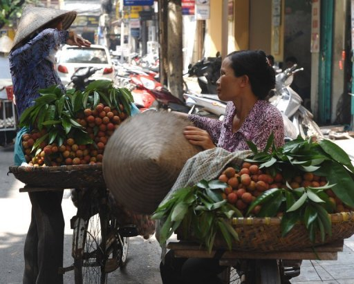 Vietnam's economic growth slowed to 4.38% in the first half of 2012 compared with the year-earlier period