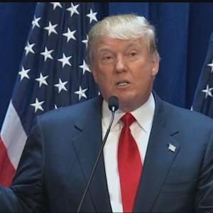 Donald Trump Comments on Immigrants From Mexico
