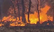 Oz Wildfires Rage On As Temperatures Ease