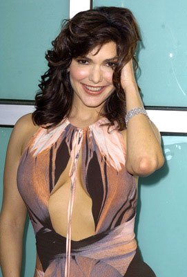 Laura Elena Harring at the L.A. premiere of Artisan's The Punisher