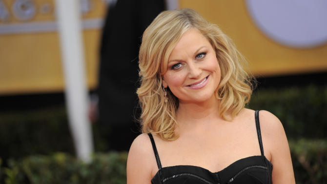 Amy Poehler working on 'non-linear' book
