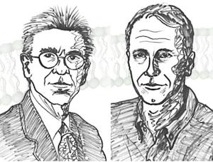 2012 Nobel Prize in Chemistry Awards Groundbreaking Cell Research