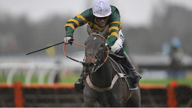 Horse Racing - Champion Hurdle hope Darlan killed in fall