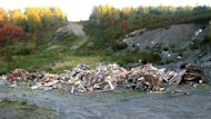 The debris of an old cabin was dumped illegally in a wooded area east of Gander, and was discovered last week.