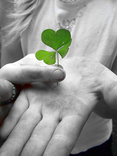 St. Patrick Used Three-Leaf Clovers to Explain the Trinity to the Pagans