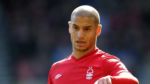 Adlene Guedioura has signed for Crystal Palace (PA Photos)