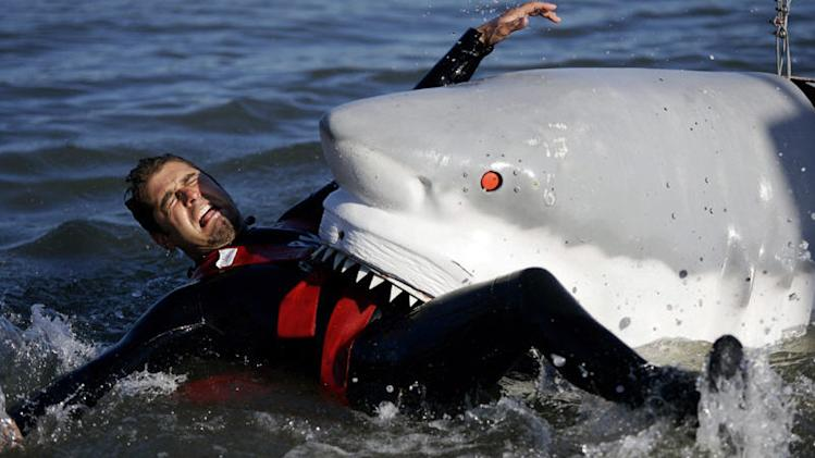 Tory Belleci demonstrates the power of a shark bite during production of the MythBusters episode for Shark Week 2008. The shark was built to apply accurate bite force of a great white shark. Emergency stop buttons were built into the shark's eyes to test the myth that a poke in the eye will make a shark stop what its doing.