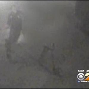 Surveillance Video Captures Lower East Side Attack