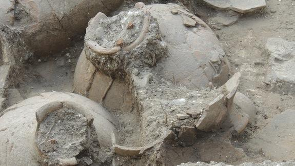 Oldest Royal Wine Cellar Uncorked in Israel