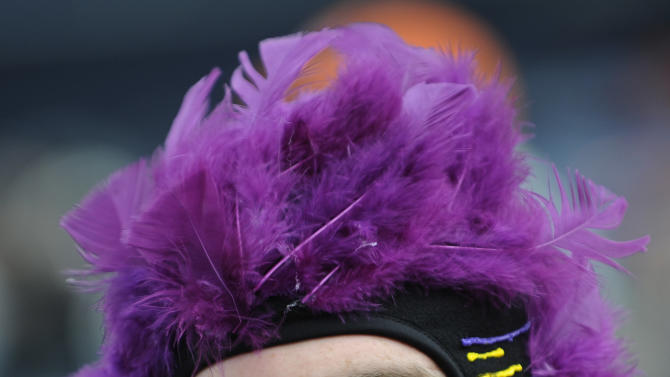 A Baltimore Ravens fan watches warm-ups before an AFC divisional playoff NFL football game against the Denver Broncos, Saturday, Jan. 12, 2013, in Denver. (AP Photo/Jack Dempsey)