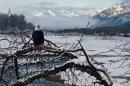 Critics question mine exploration near Alaska eagle preserve