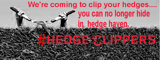 hedge clippers2