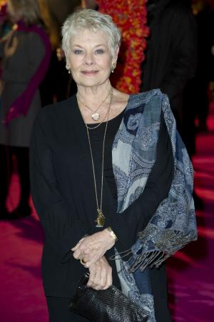 FILE - A Tuesday, Feb. 7, 2012 photo from files showing British actress, Judi Dench, arriving for 'The Best Exotic Marigold Hotel' world premiere at a central London venue. Actress Judi Dench says she's battling to save her sight. The James Bond star told the Daily Mirror newspaper that she had been diagnosed with a degenerative eye condition that can cause blindness. In an interview published Saturday Feb. 18, 2012, she said that her sight was already so bad she couldn't read her scripts and even had difficultly distinguishing the people she was dining with. (AP Photo/Jonathan Short, File)