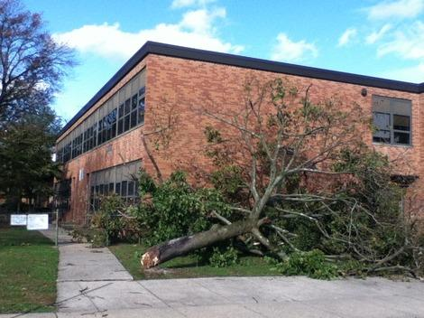 Hurricane Sandy Topples Trees Over in Front of Elementary School in Valley Stream, New York