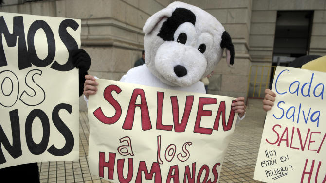 "Pro-life demonstrators dressed in animal costumes holding protest signs that read in Spanish; ""Save the humans,"" perform in front of the Uruguayan Congress in Montevideo, Uruguay, Wednesday, Oct. 17, 2012. The Uruguayan Senate on Wednesday voted to legalize all first trimester abortions in a groundbreaking step in Latin America. (AP Photo/Matilde Campodonico)"