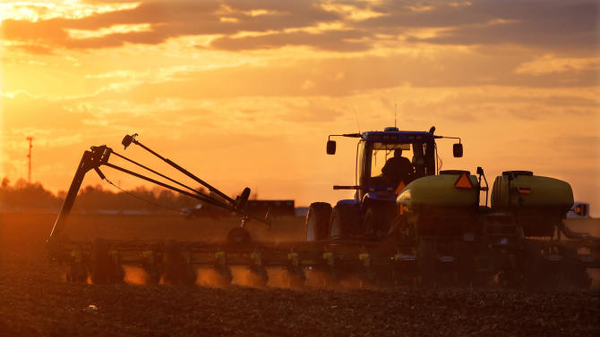 In this Saturday, May 3, 2014 photo, central Illinois corn and soybean farmer Michael Mahoney races against a setting sun to plant seed corn in Ashland, Ill. A U.S. government report says the nation's corn growers should have banner production this year despite lesser acreage devoted to the grain. But corn prices later in the year may suffer a bit. (AP Photo/Seth Perlman)