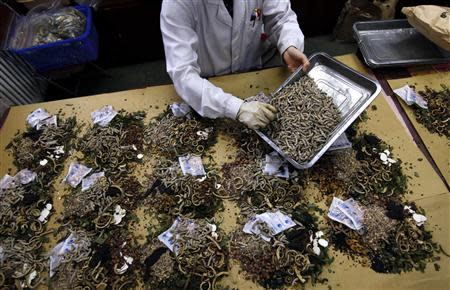 File photo of a worker preparing traditional Chinese herbal medicines at Beijing's Capital Medical University Traditional Chinese Medicine Hospital