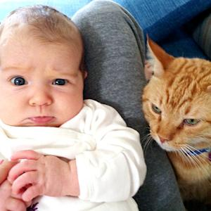 PIC: Aww! Alyson Hannigan's Baby Girl Keeva Freaks out Next to Pet Cat