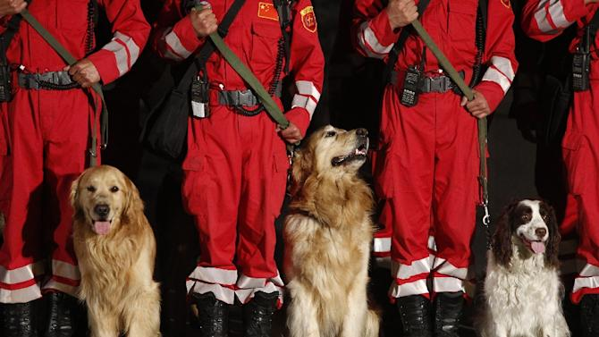 Chinese search and rescue personnel with their search dogs prepare to head to Nepal from Beijing